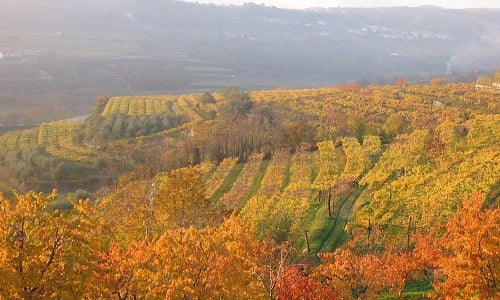 Things To Do In The Veneto In October